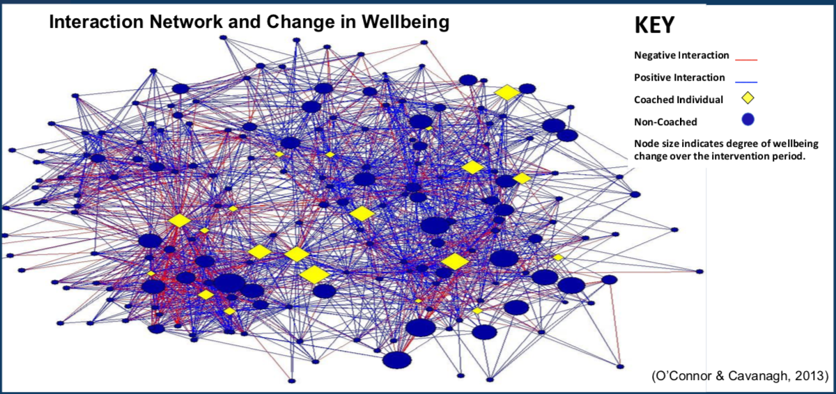 Interaction Network and Change in Wellbeing